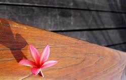 Noch Leben der rosafarbenen Blume auf hölzerner Patiotabelle Lizenzfreies Stockfoto