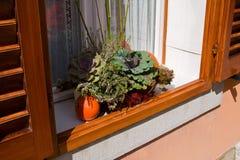 Noch Leben im Fenster Stockfotos