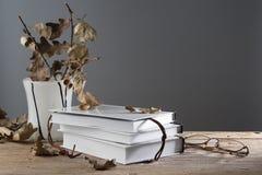 Noch Leben mit Büchern Lizenzfreie Stockfotos