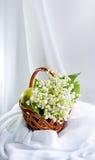 Noch Leben mit den Blumen der Lilie des Tales Lizenzfreie Stockfotos