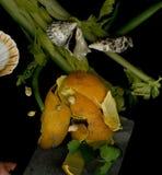 Noch Leben mit einer orange Schale Stockfoto