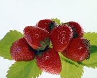 Noch Leben mit Früchten Stockbild