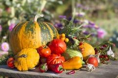 Noch Leben mit Gemüse Stockbilder