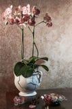 Noch Leben mit Orchidee Lizenzfreie Stockfotos