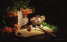 Noch Leben mit Pilzen Stockbild