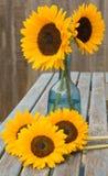 Noch Leben mit Sonnenblumen im blauen Glasdekantiergefäß, Stockbilder