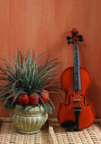 Noch Leben mit Violine Lizenzfreie Stockbilder