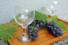 Noch lebens- blaue Trauben auf einem Behälter und zwei Weingläsern lizenzfreies stockfoto