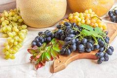 Noch lebens- helle Frucht auf hellem Gewebe Weinlese Schwarzes und gre Lizenzfreie Stockbilder