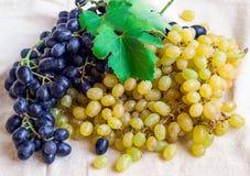 Noch lebens- helle Frucht auf hellem Gewebe Weinlese Schwarzes und gre Lizenzfreie Stockfotografie
