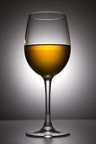 Noch-Lebensdauer mit dem Weinglas Lizenzfreies Stockfoto