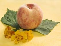 Noch-Lebensdauer mit einem Pfirsich Lizenzfreies Stockfoto