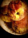 Noch-Lebensdauer mit einer Schüssel Pfirsichen stockbild