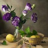 Noch purpurrote Blumen und Zitronen des Leben Eustoma Lizenzfreie Stockfotos
