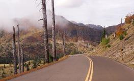 Noch schädigender Vulkan Landschaftsexplosions-Zone Mt St. Helens Stockfotografie