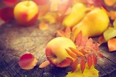 Noch verlässt das Leben mit aunumn über hölzernem Hintergrund Bunte Blätter, Äpfel und Birnen des Herbstes stockfotografie