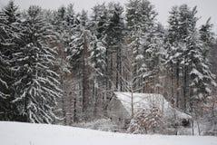 Noch vom Winter Lizenzfreies Stockbild