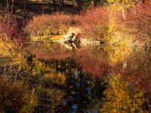 Noch Wasser im Herbst Stockfotos