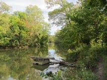 Noch Wasser unter Bäumen Stockfotografie
