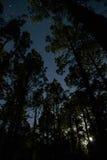 noche Fotos de archivo libres de regalías