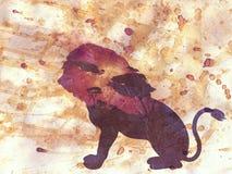 Noche africana con Lion Grunge Imágenes de archivo libres de regalías
