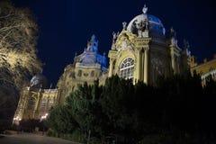 Noche Budapest Fotos de archivo