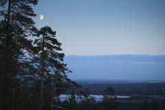 Noche/claro de luna/paisaje del invierno Fotos de archivo