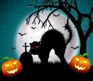 Noche de Halloween con las calabazas y el gato asustadizo Foto de archivo