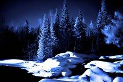 Noche de la luna en el lago en bosque profundo Foto de archivo