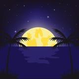 Noche de la luna en trópico Imagenes de archivo