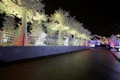 Noche de la Navidad Moscú --- Bosque de la música en viaje del ` del festival del cuadrado de Pushkin al ` de la Navidad, Rusia Imagen de archivo
