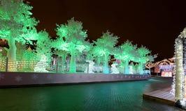 Noche de la Navidad Moscú --- Bosque de la música en viaje del ` del festival del cuadrado de Pushkin al ` de la Navidad, Rusia Foto de archivo libre de regalías