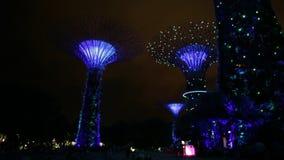 Noche de Supertree Singapur almacen de video