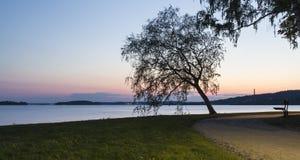 Noche de verano Fotografía de archivo libre de regalías