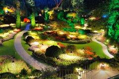 Noche de verano del jardín Imágenes de archivo libres de regalías