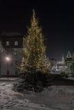 Noche del invierno en Regensburg Fotos de archivo libres de regalías