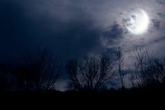 Noche del otoño Foto de archivo libre de regalías