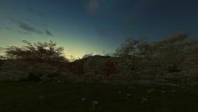 Noche del timelapse del paisaje de la primavera a la salida del sol del día