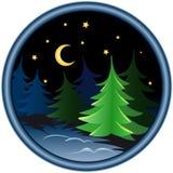 Noche en el bosque del invierno Foto de archivo