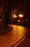 Noche en el parque Imágenes de archivo libres de regalías