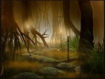 Noche en humedales Imagen de archivo libre de regalías