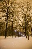 Noche en parque Imágenes de archivo libres de regalías