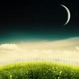 Noche estrellada en el prado de la belleza ilustración del vector