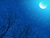 Noche estrellada iluminada por la luna fotografía de archivo libre de regalías