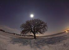 Noche fría hermosa en Dobrogea Imagen de archivo libre de regalías