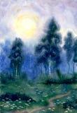 Noche hermosa Imagenes de archivo