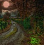 Noche iluminada por la luna foto de archivo