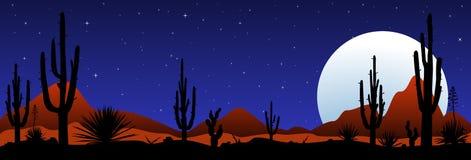 Noche iluminada por la luna en el desierto mexicano