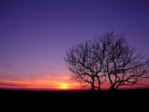Noche inminente Foto de archivo libre de regalías