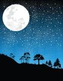 Noche-luna   Fotos de archivo